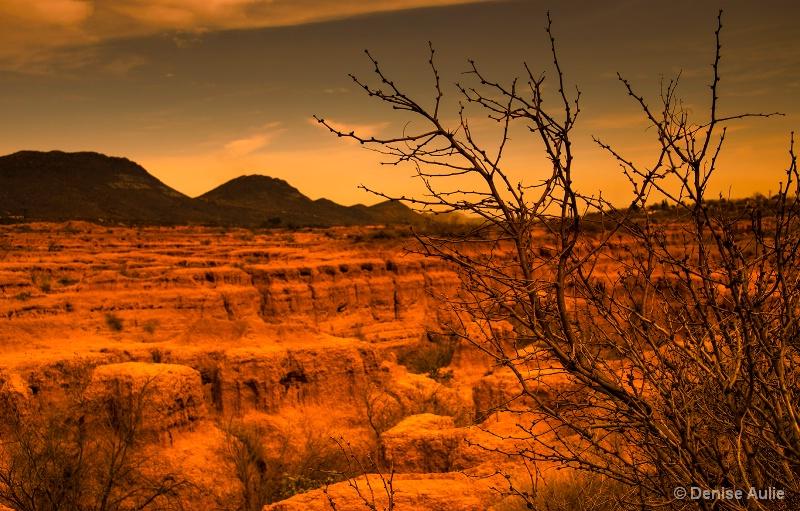 Desert Northern Mexico