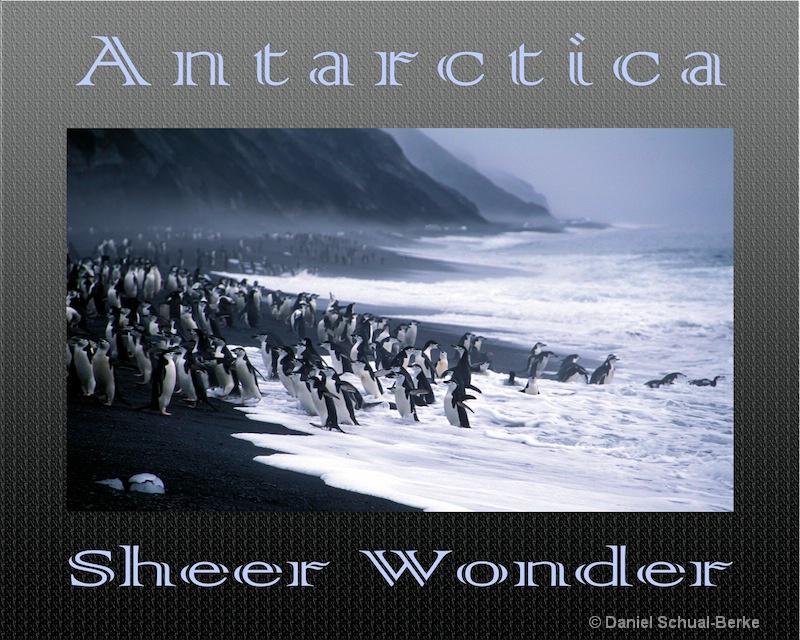 """Sheer Wonder""  poster"