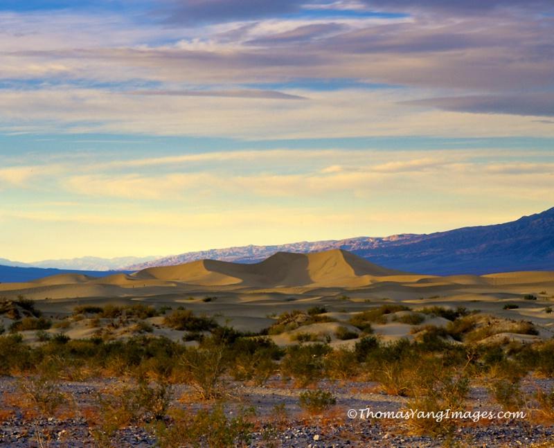 Palette in Desert Sky