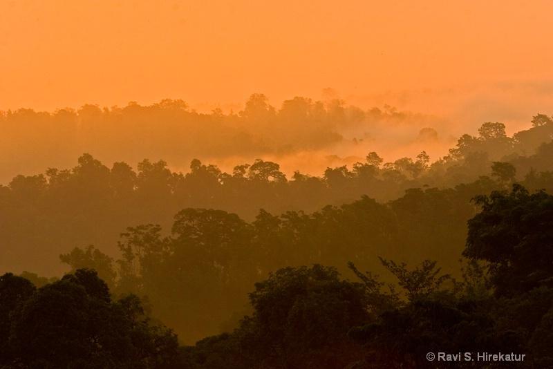 Western Ghats at dawn
