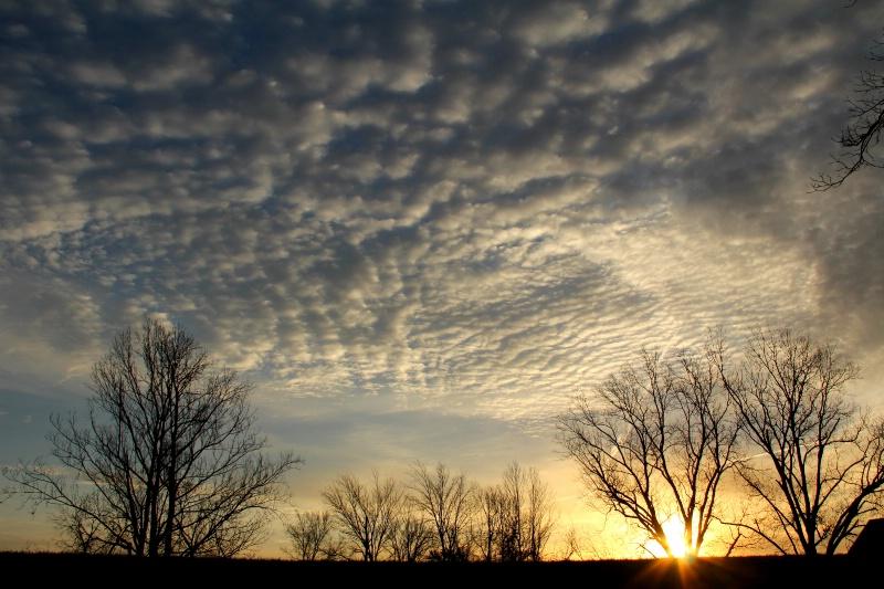 Sunrise Over the Levee