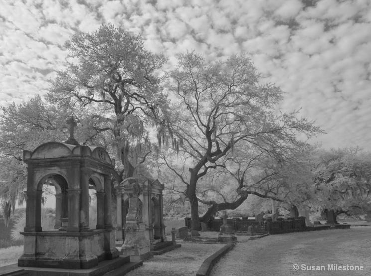 Magnolia Cemetery IR 8658