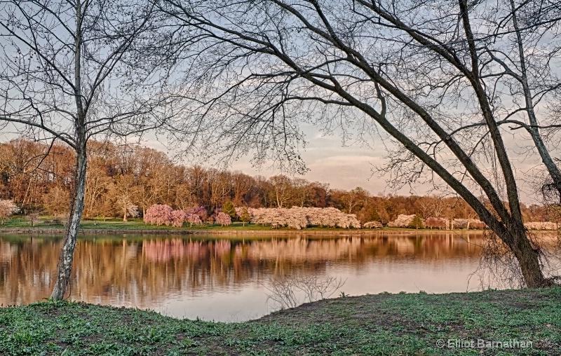 Spring in Philadelphia 4