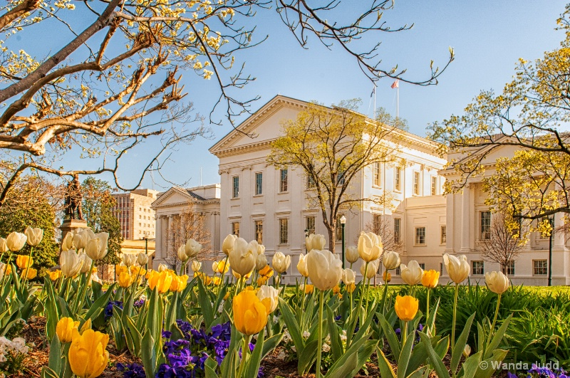 Virginia State Capitol in Spring ... II