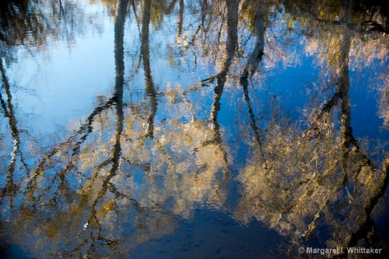 Beaver Creek Reflection