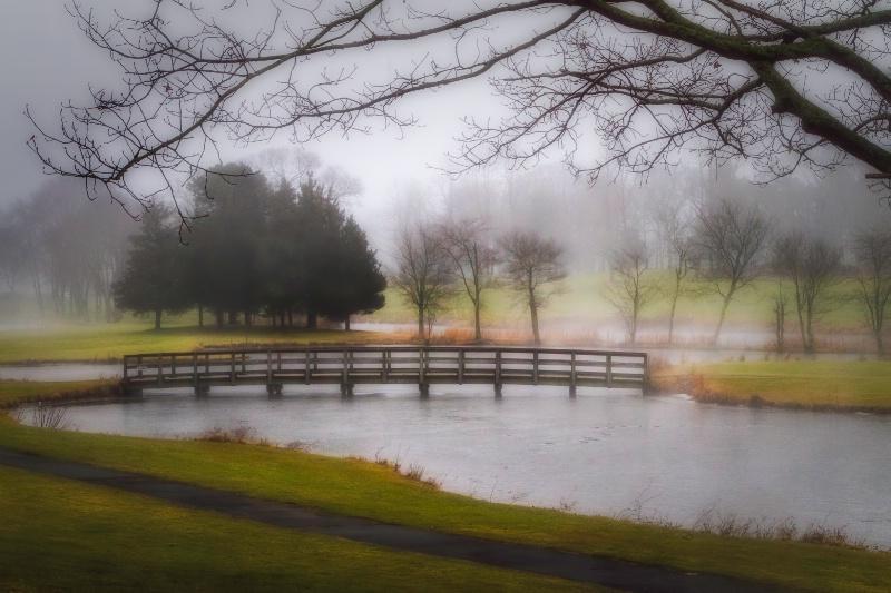 Foggy Morning At Spring Lake