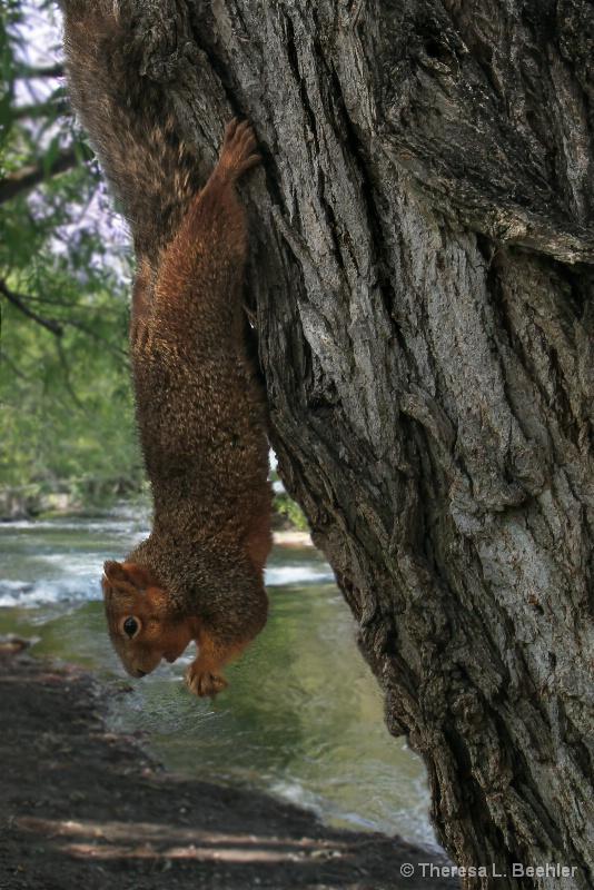 Hangin' Around