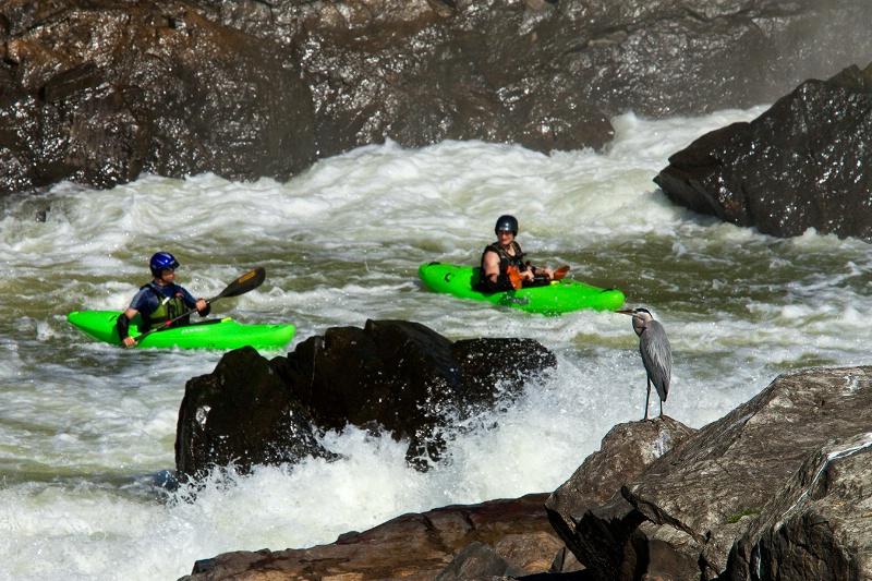 Kayak Class