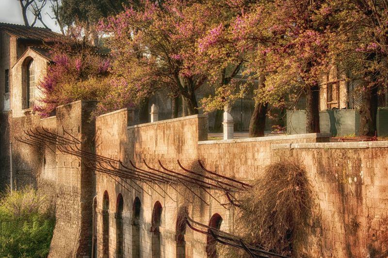 Springtime at the Roman Wall
