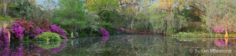 Red Bridge 13 Pan 2_3, Magnolia Plantation