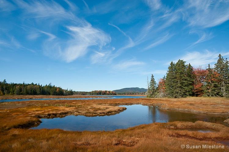 Marsh 1609, Acadia NP