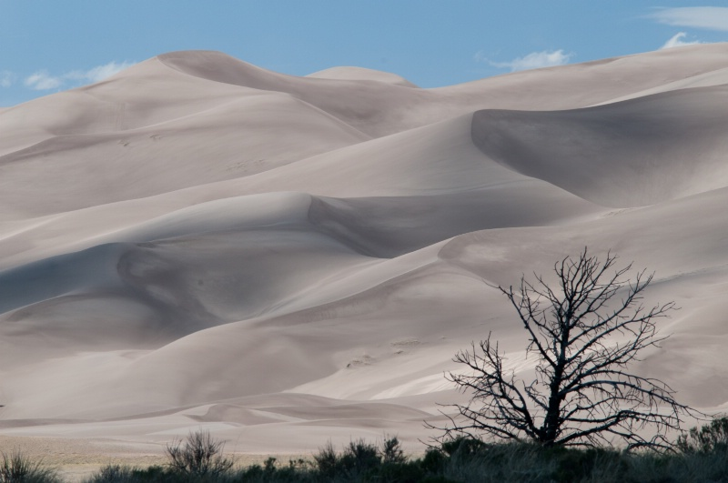 Dunes and Silhouette