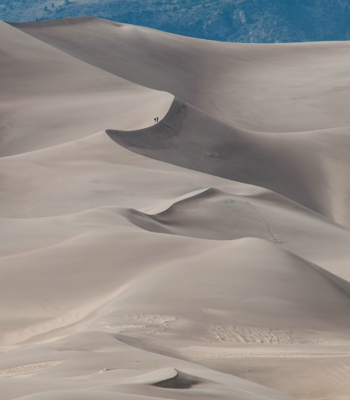 Spine of the Dunes