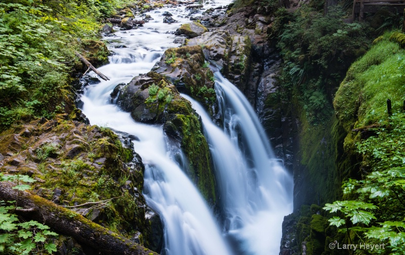 Olympic National Park- Sol Duc Falls