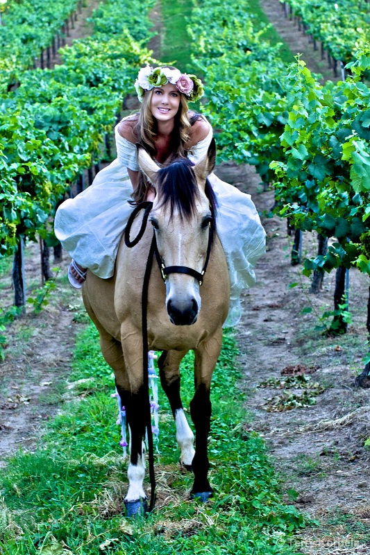 Princesss in the Vineyard