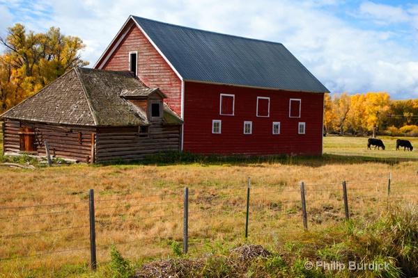 gunnison farmland