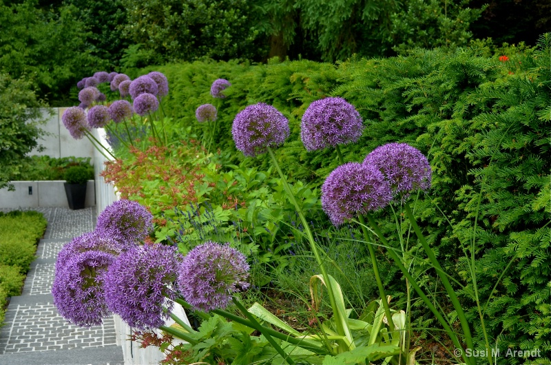 Antje's Garden