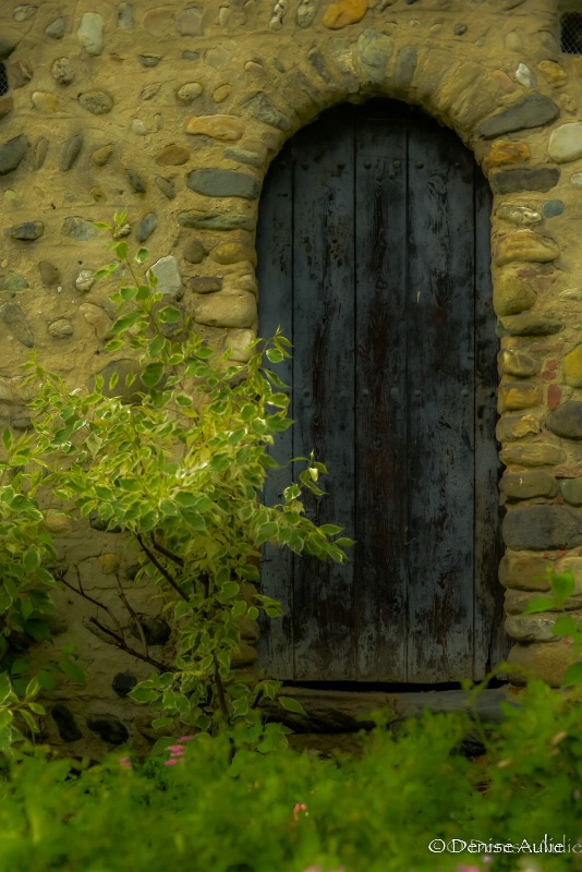 Medieval Door - Turin