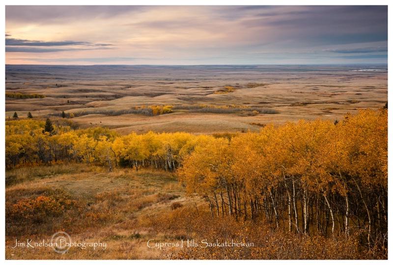 Autumn, Cypress Hills Saskatchewan