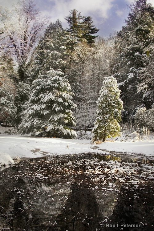 winter at Biltmore