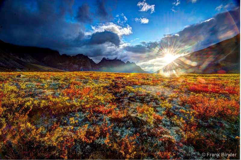 Autumn ablaze in the Yukon