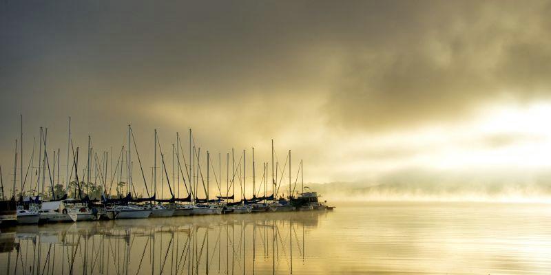 Marina Morning II