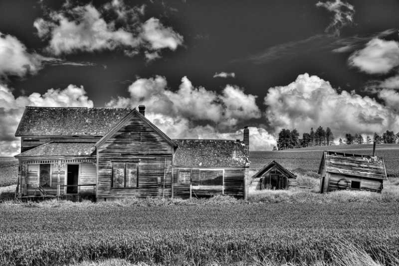 Abandoned house, Palouse, Washinton