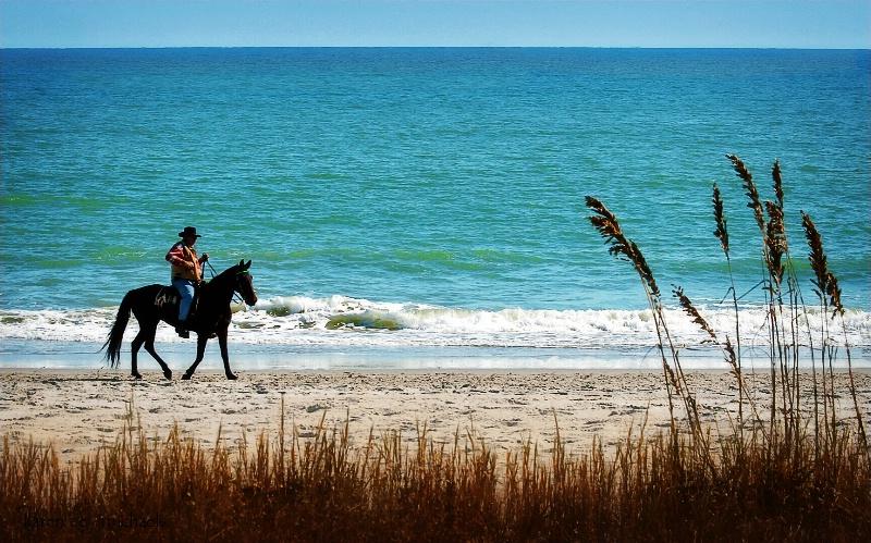 Horseback on the Beach
