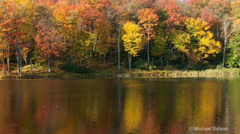 Davis Pond 5