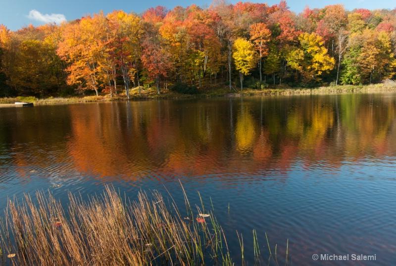 Davis Pond 1