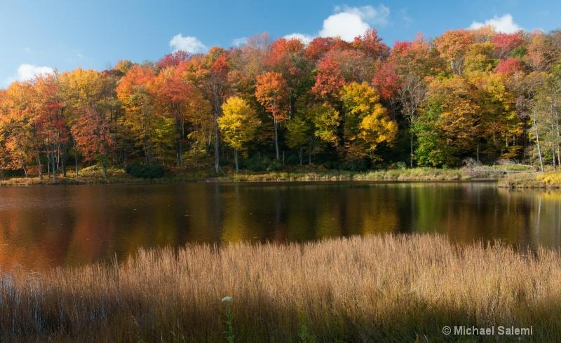 Davis Pond 2