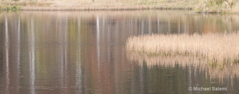 Davis Pond 3