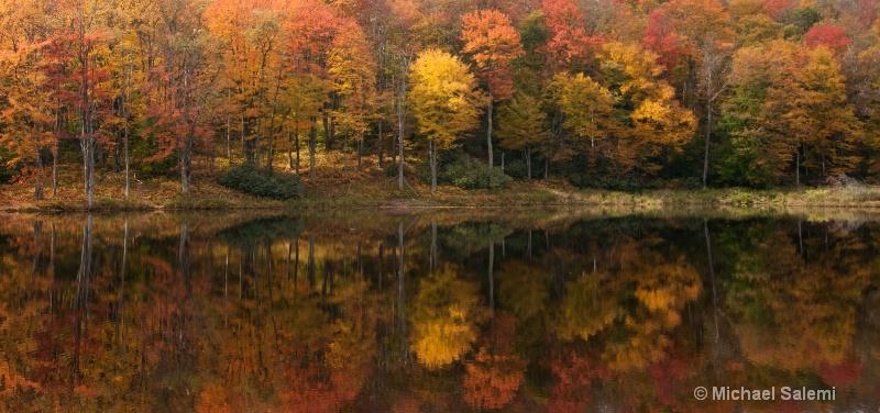 Davis Pond 6