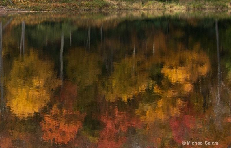 Davis Pond 7
