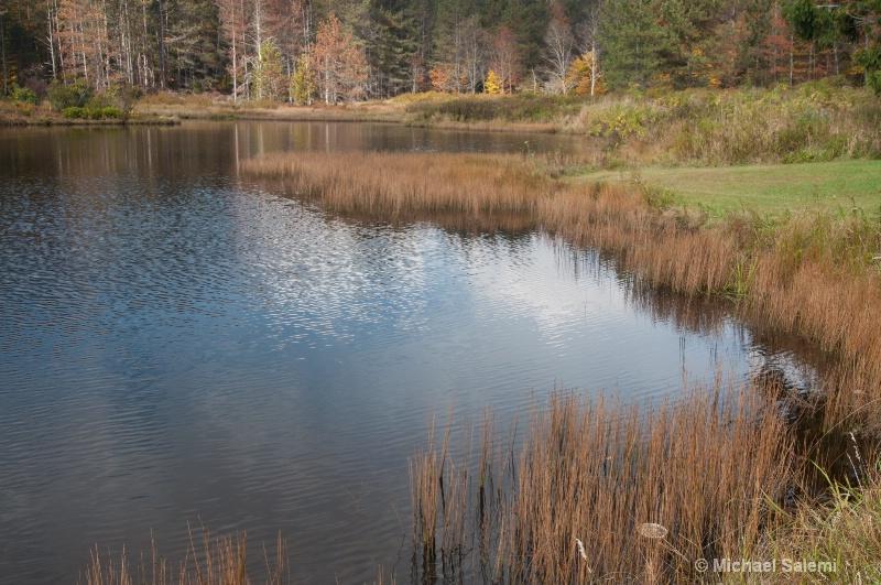 Davis Pond 8