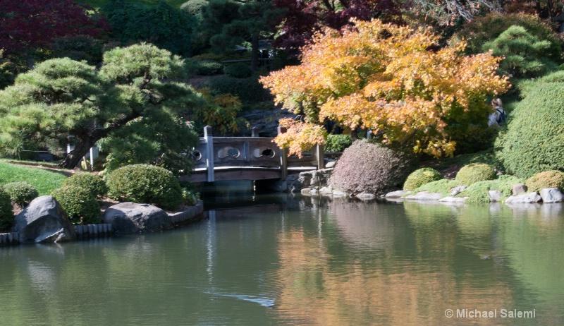 Brooklyn Botanic Garden 1