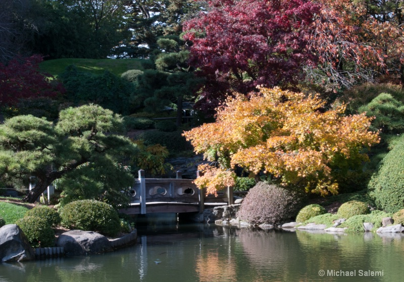 Brooklyn Botanic Garden 2