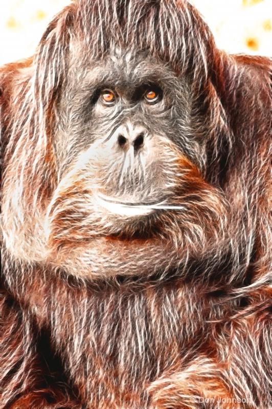 Artistic Orangutan