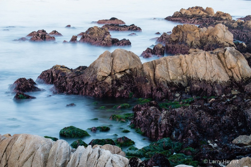 Early morning- Pacific Grove, CA