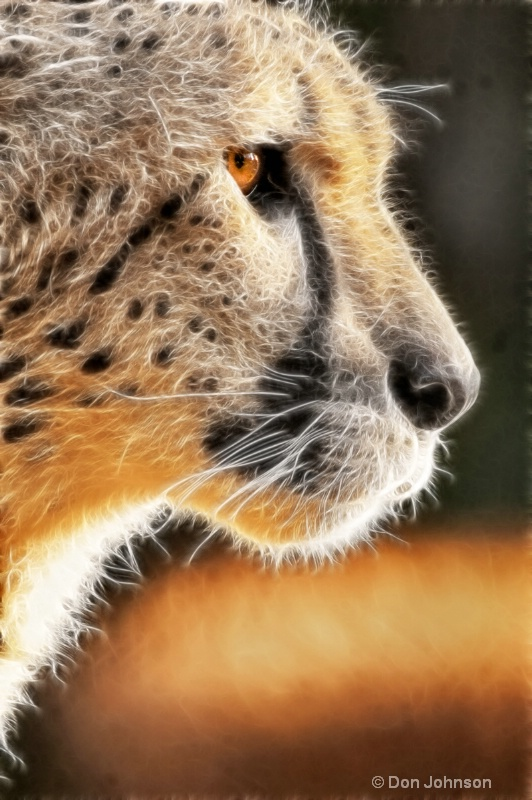 Cheetah Profile-Fractalius