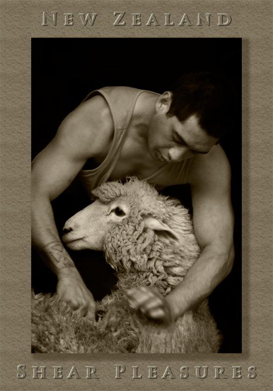 NZ: Shear Pleasures