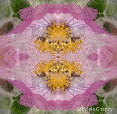 Cosmo in ice II - kaleidoscopic
