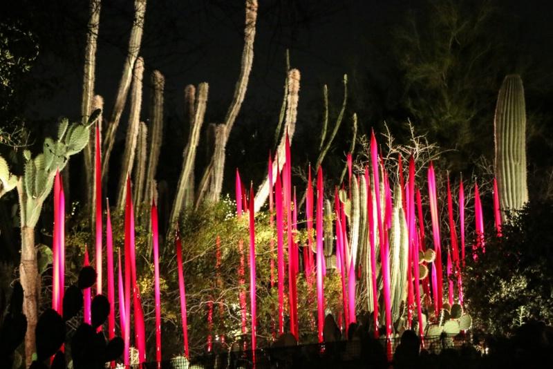 Chihuly Garden Night shot