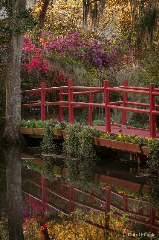 The Red Bridge ~ Magnolia Gardenes