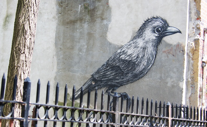 Perched by Roa