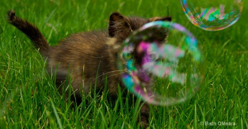 Felix the Ferocious Bubble Hunter