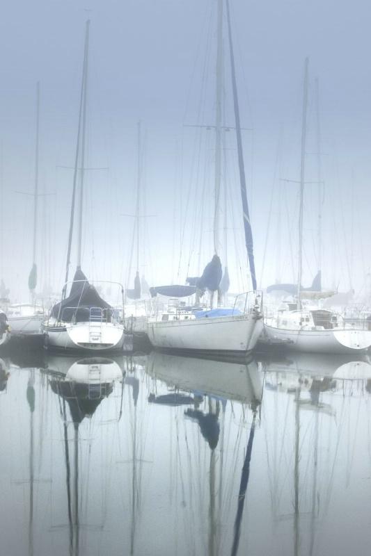 Misty Marina II
