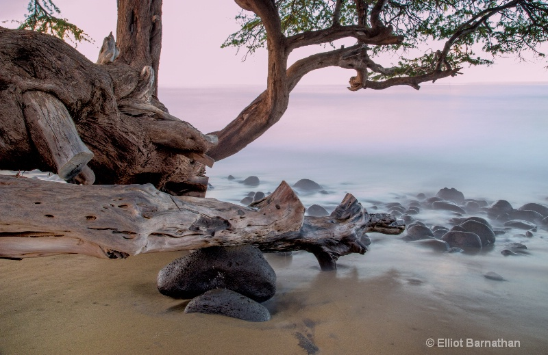 Maui Seascape