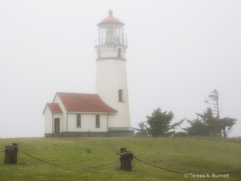 Cape Blanco In Fog
