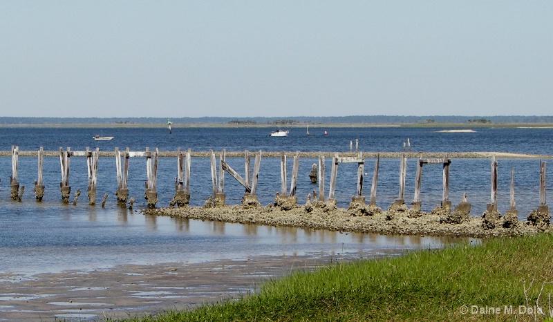 Apalachiocola Bay